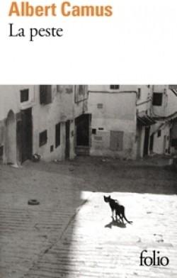 Découvrir ou redécouvrir Camus : fiction (2) par Géraldine Montgomery, Jeudi 06.11 à 16h30 à DIEULEFIT SANTE.