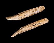 A DIEULEFIT SANTE, découvertes archéologiques de DIEULEFIT à NYONS, de la préhistoire à l'antiquité tardive