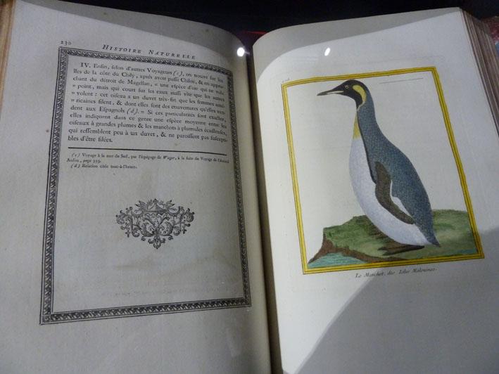 Un des deux exemplaires de l'Histoire naturelle de Buffon.